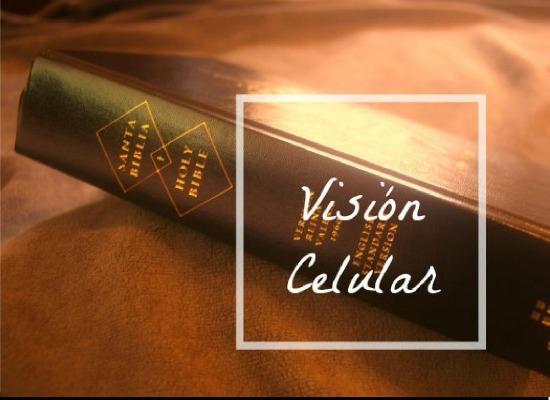 VISION-CELULAR-1
